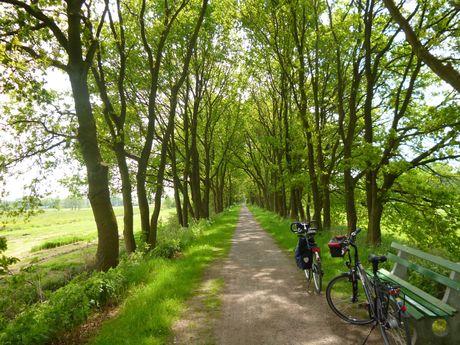 Mit dem Fahrrad am Ostfriesland-Wanderweg
